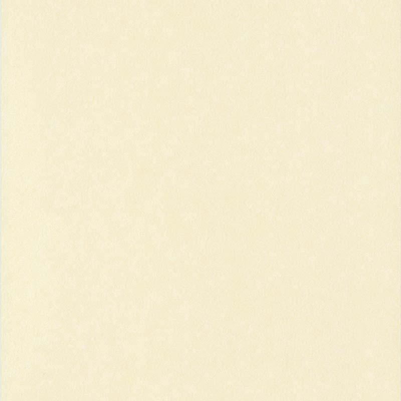 ACIER BROSSÉ BEIGE CLAIR – 65130407A