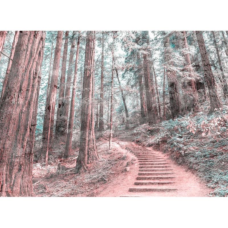 FOREST WALK 2 – DD118628